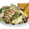 Waldorf Grilled Chicken Salad