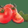 Side of Fresh Tomatoes