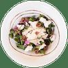 Purple Kale & Ricotta Salad